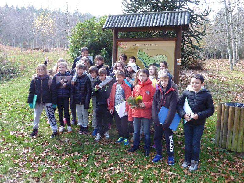 Les élèves de 6ème lors de la sortie à l'arboretum